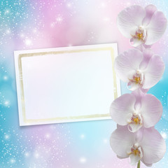 Beautiful pink orchid branch on an abstract background of a deli