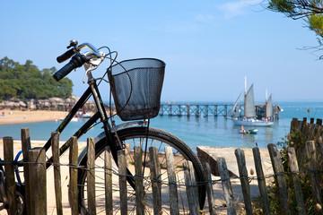 France > Noirmoutier > Bois de la Chaise > Vélo