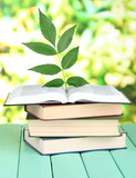 Books with plant on table on bright background