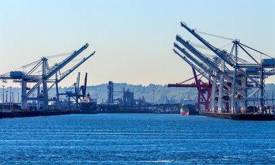 Seattle Washington Port Red White Cranes Freighters Ships