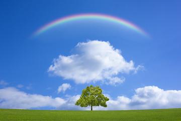 草原と木と虹