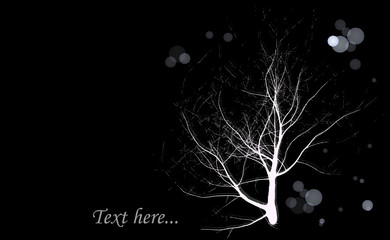 Darkness tree background