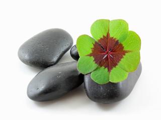 Steiniges Glück