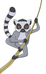 lemur cartoon character