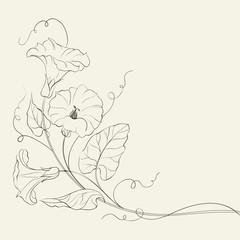 Bindweed flower pattern.