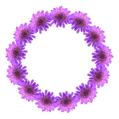 Circle frame of purple flowers