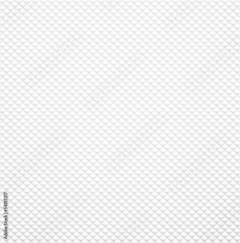 Grey textured squama background.