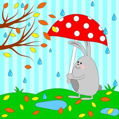 Cute rabbit under umbrella