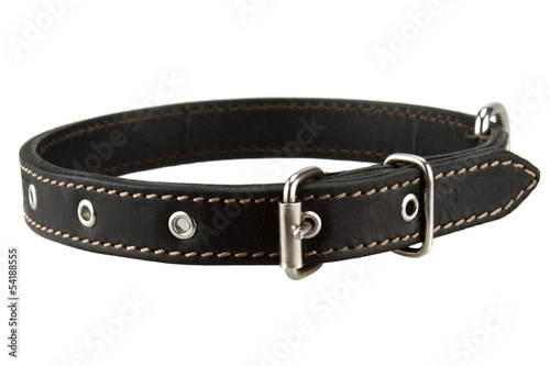 Fotobehang Dragen black leather dog collar