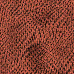 A red-brown dragon scale textured background