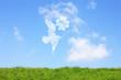 草原と鳥とクローバー