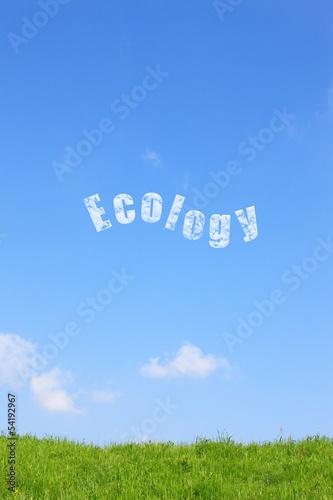 草原とエコロジー