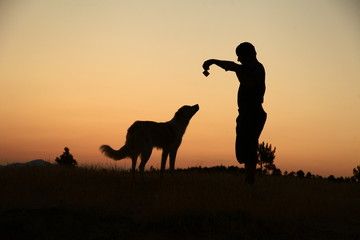 dog and human silhouette
