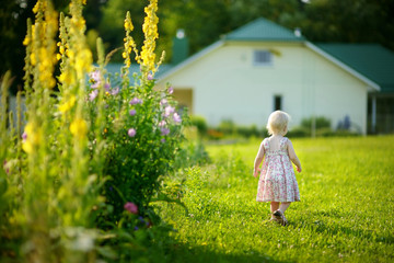 Adorable toddler girl in a garden