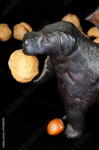 Dog nutcracker with walnut © Arena Photo UK