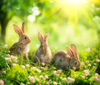 Rabbits. Art Design of Cute Little Easter Bunnies in the Meadow