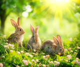 Rabbits. Art Design of Cute Little Easter Bunnies in the Meadow - 54200545