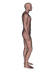 Male - 3D render