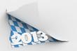 2013 fest