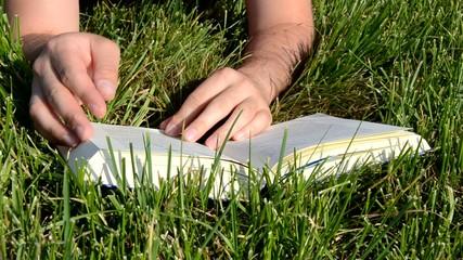 Buch Wiese Lesen Umblättern
