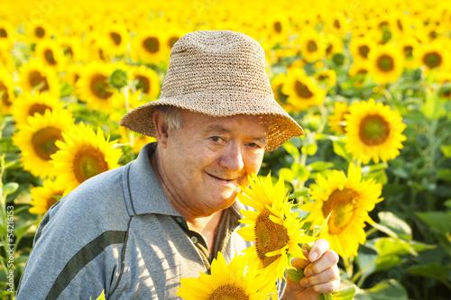 farmer in sunflower field