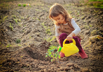Little girl watering plants in a garden