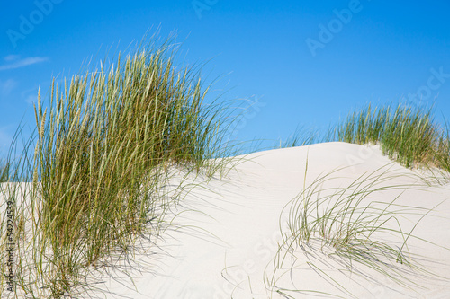 strand meer leinwandbilder wandbilder kunstdrucke. Black Bedroom Furniture Sets. Home Design Ideas
