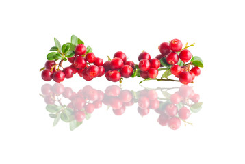 Ripe fresh cranberries isolated on white background