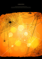 Orange background with spiders