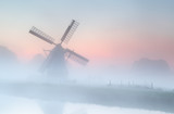 windmill in dense fog at summer sunrise