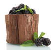 beautiful blackberries with leaves in wooden vase isolated