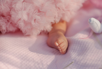 on a pink background leg a little girl in a pink dress lush