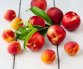 Colorful summer fruits - apricots, nectarines and peaches on woo
