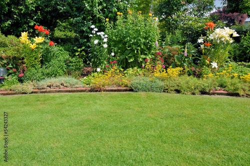 Gartenansicht mit Rasen und Stauden