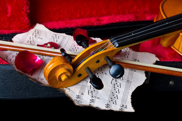Violin in carry case