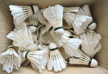 Used Badminton Shuttlecocks