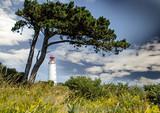 Fototapety Lechtturm Dombusch auf der Insel Hiddensee