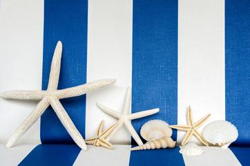 Maritim: Seesterne vor blau-weiß-gestreiftem Hintergrund