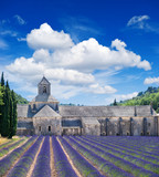 Senanque abbey with lavender field, landmark of Provence, Vauclu