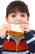 Adorable Caucasian Boy Child Eating Peanut Butter Sandwich in St