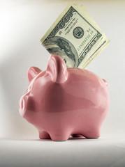 save dollars piggy bank