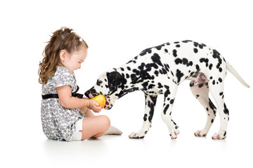 baby girl feeding young dog