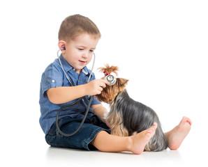 boy kid examining dog