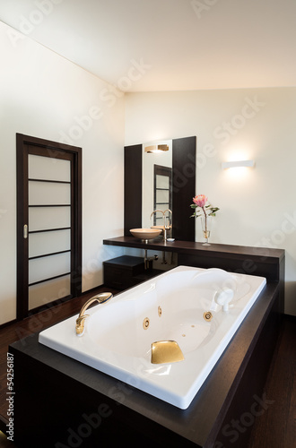 interior luxury apartment, beautiful room with bath
