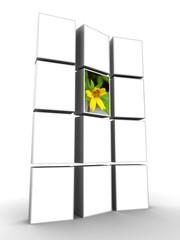 Photo frame display