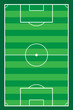 football soccer stadiun field vector