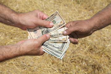 Farmer and buyer hands holding dollar banknote, field