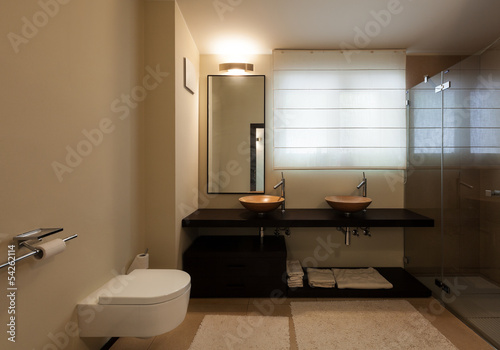 interior luxury apartment, beautiful bathroom
