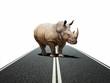 rhino way