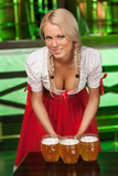 Women in traditional German clothing. Beautiful young women in t